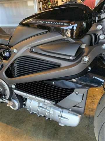 2020 Harley-Davidson Electric LiveWire at Powersports St. Augustine