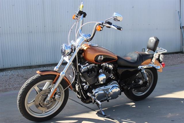 2008 Harley-Davidson Sportster 1200 Custom at Gruene Harley-Davidson