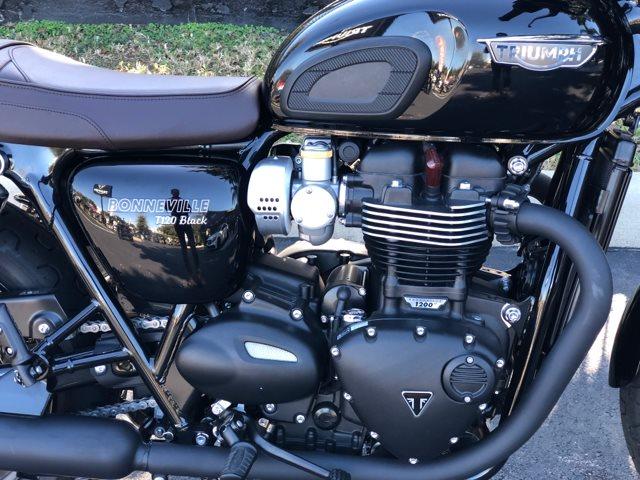 2019 Triumph Bonneville T120 Black at Tampa Triumph, Tampa, FL 33614