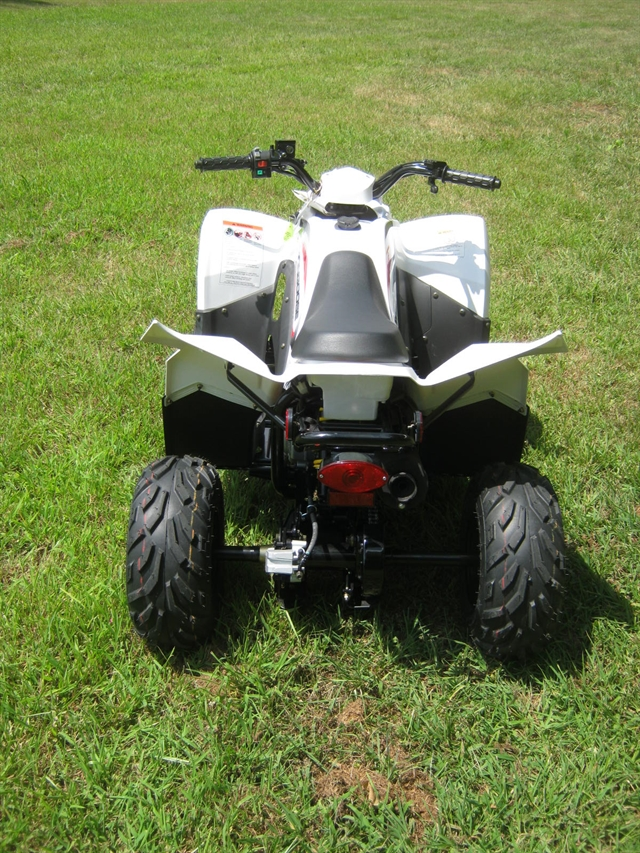 2019 KYMCO Mongoose 70S at Brenny's Motorcycle Clinic, Bettendorf, IA 52722