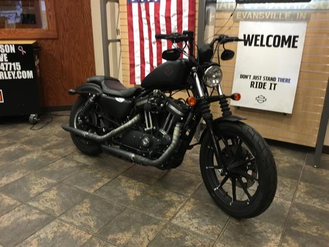 2019 Harley-Davidson Sportster at Bud's Harley-Davidson