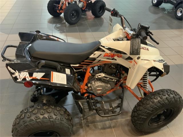 2021 Kayo JACKAL 200 at Midland Powersports