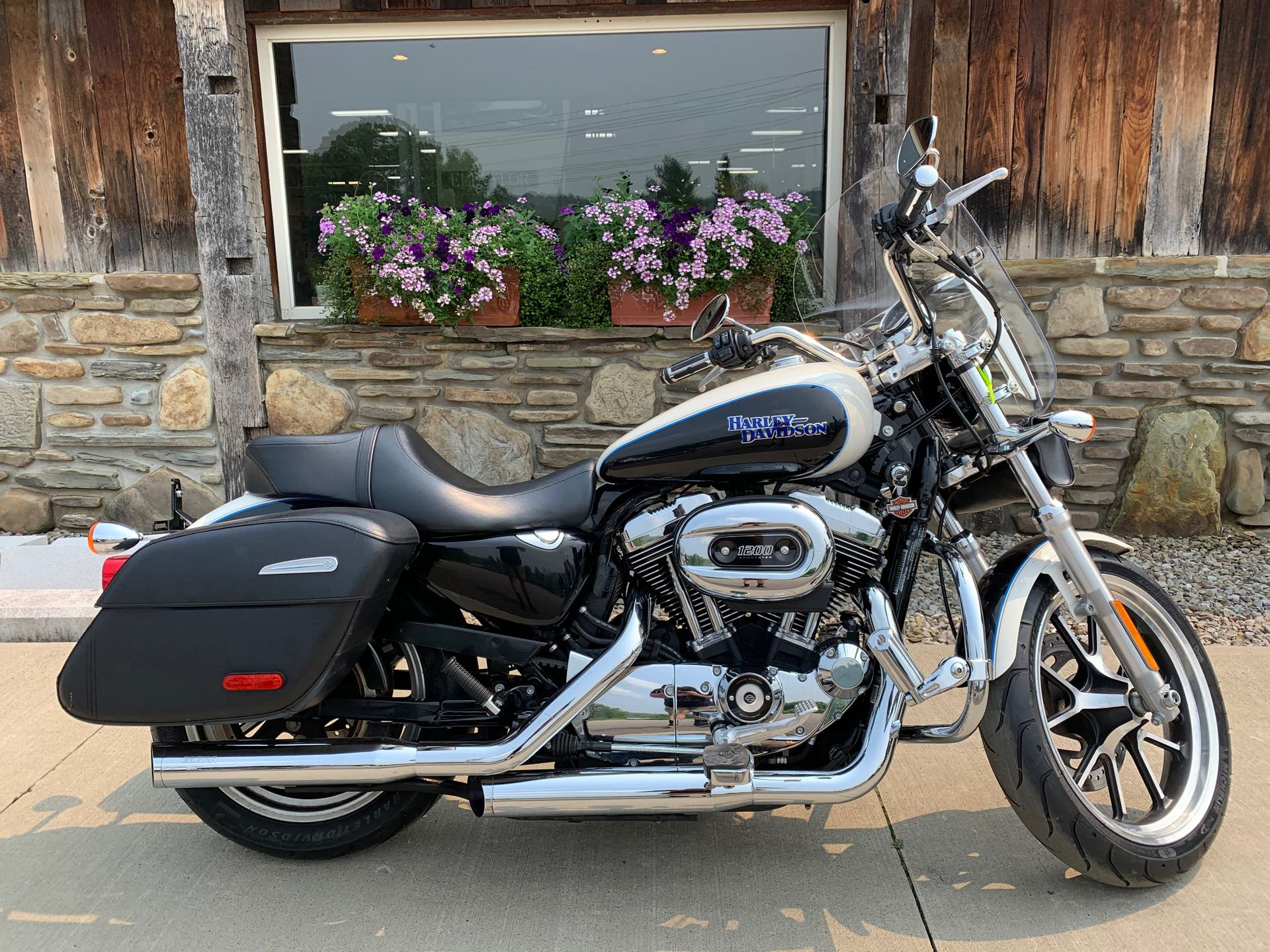 2014 Harley-Davidson Sportster SuperLow 1200T at Arkport Cycles