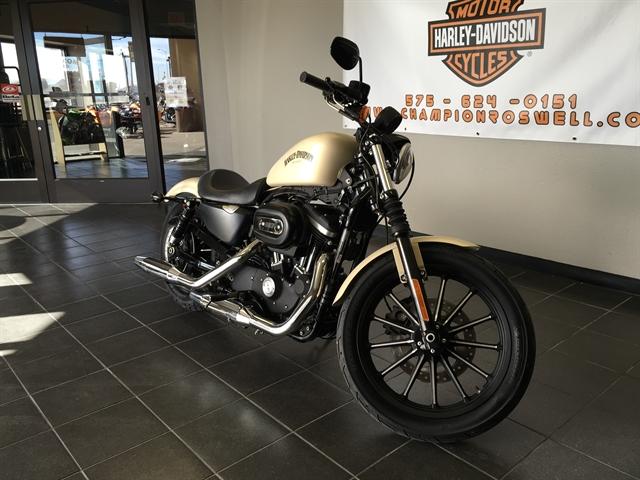 2014 Harley-Davidson Sportster Iron 883 at Champion Harley-Davidson
