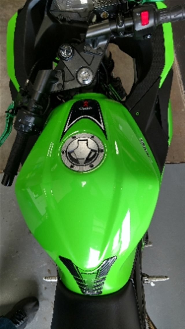 2014 Kawasaki Ninja 300 ABS at La Crosse Area Harley-Davidson, Onalaska, WI 54650
