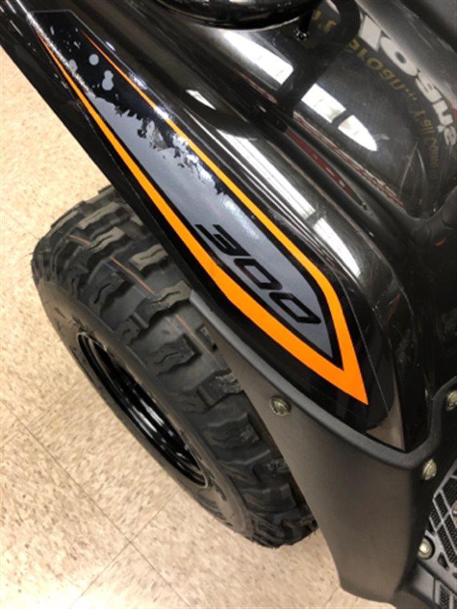 2018 Kawasaki Brute Force 300 at Sloan's Motorcycle, Murfreesboro, TN, 37129