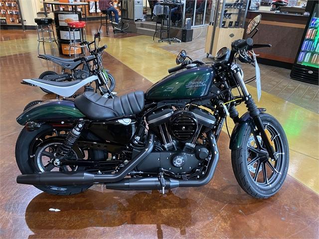 2021 Harley-Davidson Street XL 883N Iron 883 at Gold Star Harley-Davidson