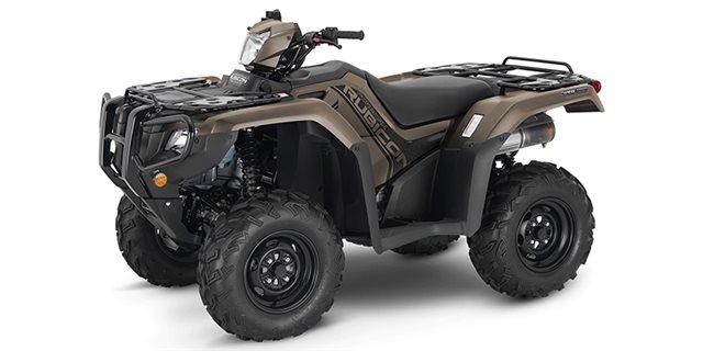2022 Honda FourTrax Foreman Rubicon 4x4 EPS at Extreme Powersports Inc