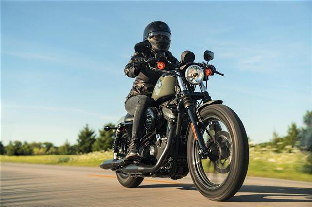 2021 Harley-Davidson Cruiser XL 883N Iron 883 at Gruene Harley-Davidson