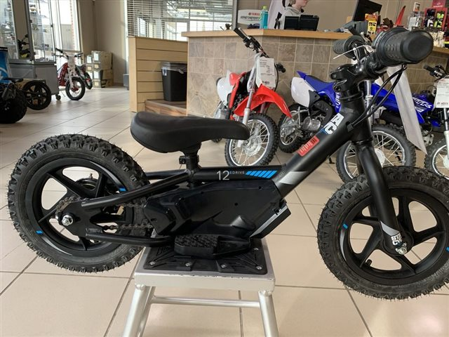 2018 Stacyc STC-1100 at Star City Motor Sports