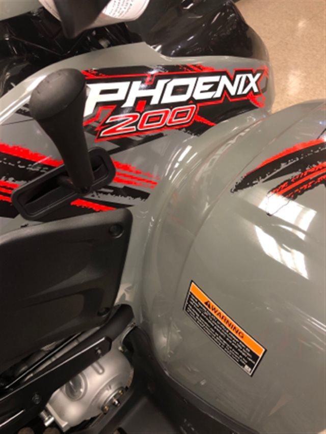2019 Polaris Phoenix 200 at Sloan's Motorcycle, Murfreesboro, TN, 37129