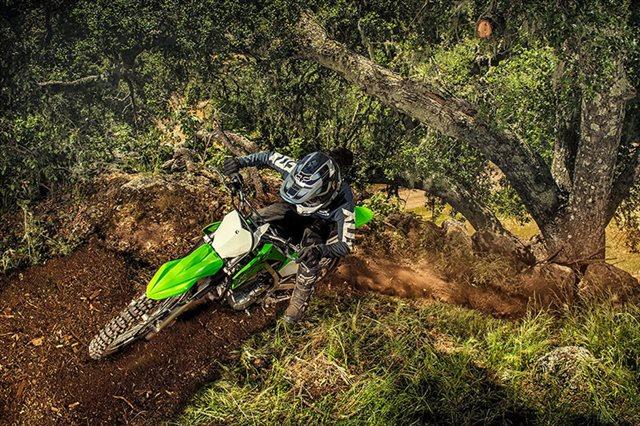 2020 Kawasaki KLX 230R at Jacksonville Powersports, Jacksonville, FL 32225