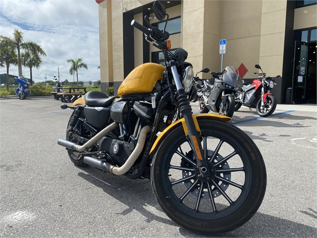 2011 Harley-Davidson Sportster Iron 883 at Fort Myers