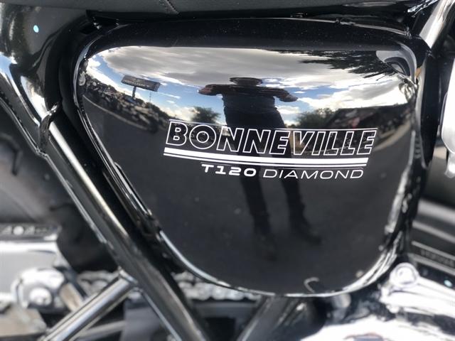 2020 TRIUMPH BONNEVILLE T120 DIAMOND at Tampa Triumph, Tampa, FL 33614