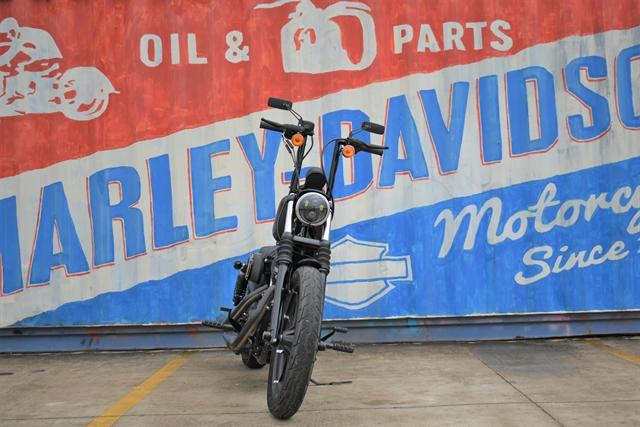 2018 Harley-Davidson Sportster Iron 883 at Gruene Harley-Davidson