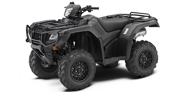 2019 Honda FourTrax Foreman® Rubicon 4x4 Automatic DCT EPS Deluxe at Sloans Motorcycle ATV, Murfreesboro, TN, 37129