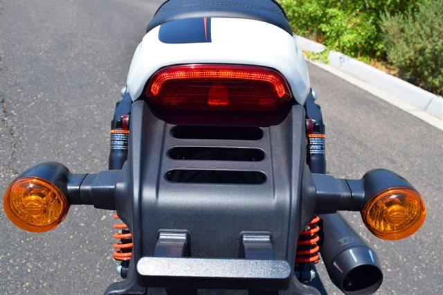 2019 Harley-Davidson Street Rod at Buddy Stubbs Arizona Harley-Davidson