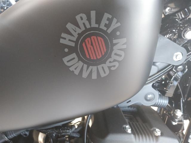 2020 Harley-Davidson Sportster Iron 883 at M & S Harley-Davidson