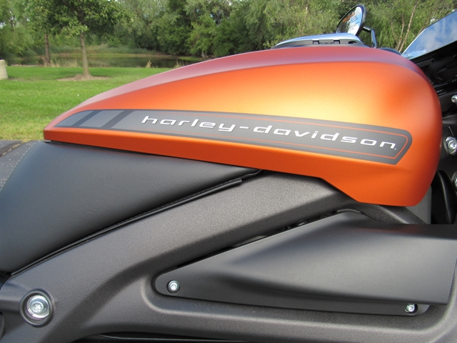 2020 Harley-Davidson Electric LiveWire at Conrad's Harley-Davidson