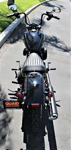 2019 Harley-Davidson Softail Street Bob® at Quaid Harley-Davidson, Loma Linda, CA 92354