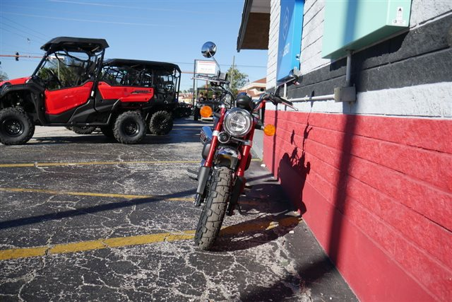 2019 Honda Monkey ABS ABS at Powersports St. Augustine
