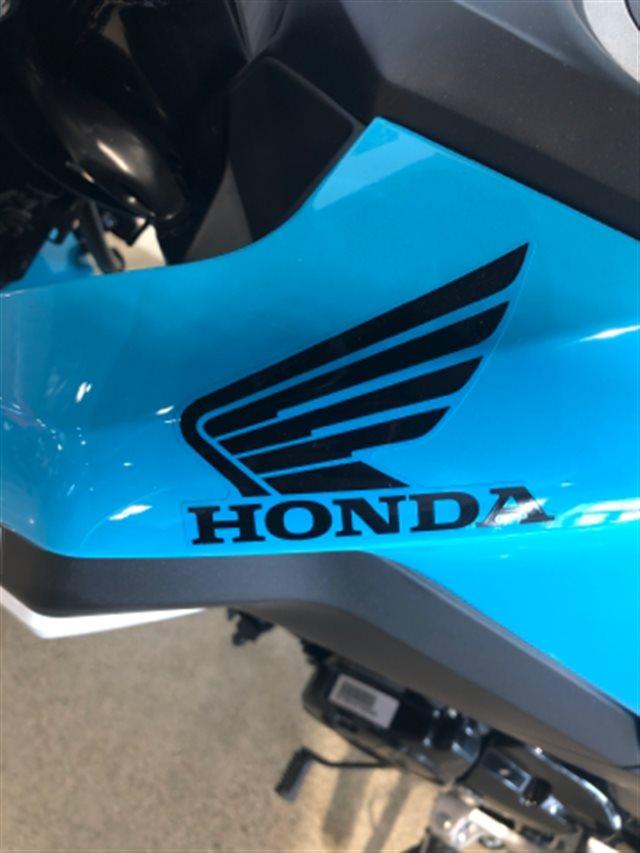 2019 Honda Grom Base at Genthe Honda Powersports, Southgate, MI 48195