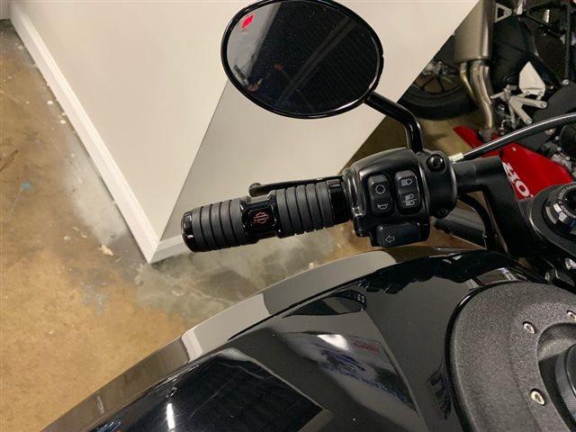 2019 Harley-Davidson FXDRS - FXDR 114 FXDR 114 at Powersports St. Augustine