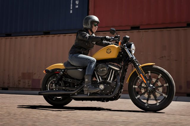 2019 Harley-Davidson Sportster Iron 883 at Arsenal Harley-Davidson