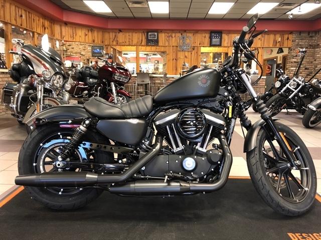 2020 Harley-Davidson Sportster Iron 883 Iron 883 at High Plains Harley-Davidson, Clovis, NM 88101