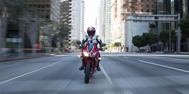 2019 Honda CBR300R Base at Got Gear Motorsports