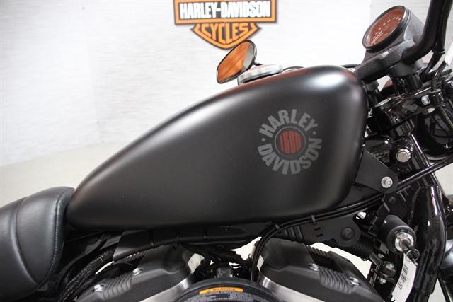 2019 Harley-Davidson Sportster Iron 883 at Suburban Motors Harley-Davidson