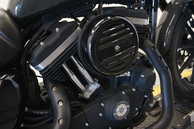 2019 Harley-Davidson Sportster Iron 883 at Texoma Harley-Davidson