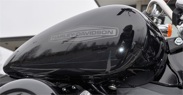 2020 Harley-Davidson Softail Standard at All American Harley-Davidson, Hughesville, MD 20637