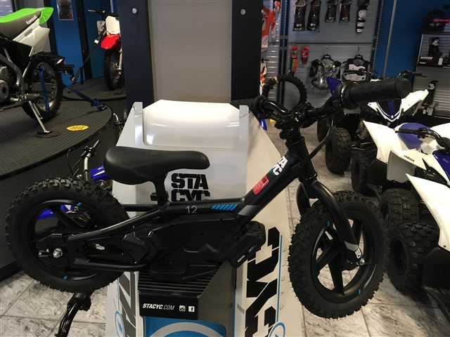 2018 STACYC ST1100 at Champion Motorsports, Roswell, NM 88201