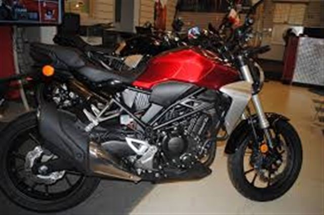 2019 Honda CB300R Base at Kent Motorsports, New Braunfels, TX 78130