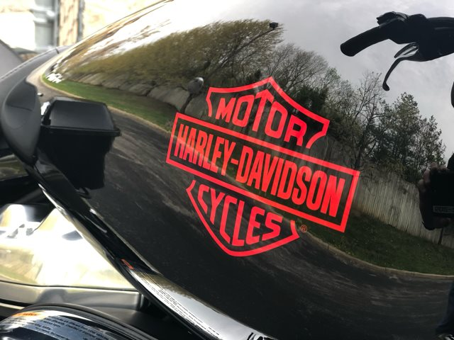 2019 Harley-Davidson Electra Glide Standard at Bluegrass Harley Davidson, Louisville, KY 40299