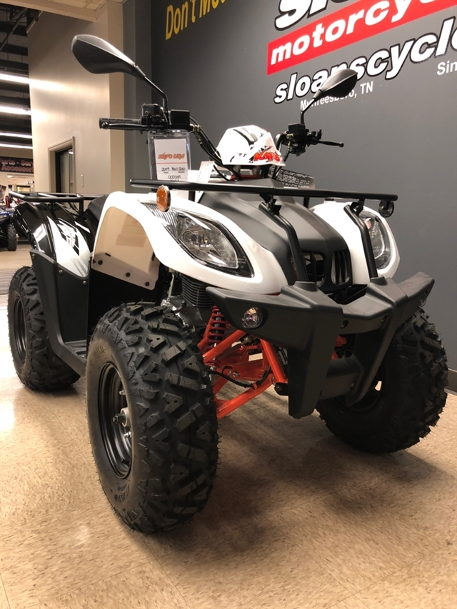 2020 KAYO USA, A & G Distributing BULL 200 AU200-W at Sloans Motorcycle ATV, Murfreesboro, TN, 37129