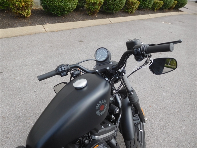 2019 Harley-Davidson Sportster Iron 883 at Bumpus H-D of Murfreesboro