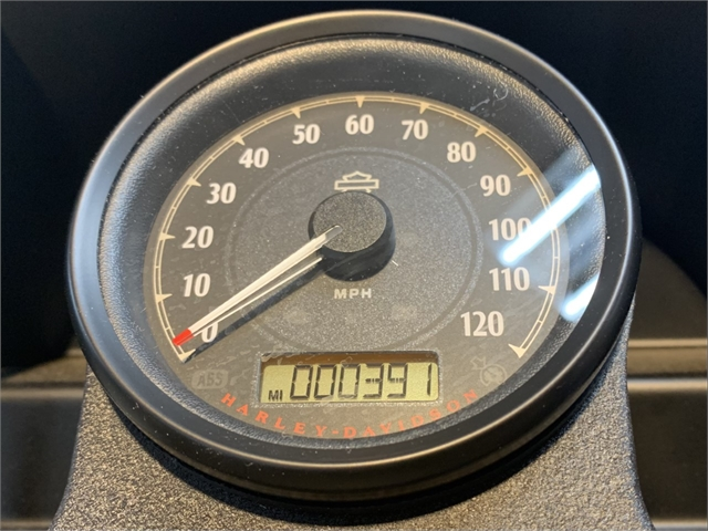 2021 Harley-Davidson Cruiser XL 1200NS Iron 1200 at South East Harley-Davidson