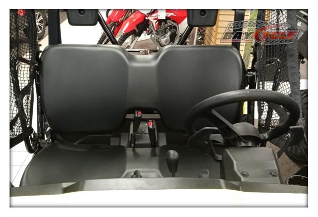 2019 Honda Pioneer 500 at Bay Cycle Sales