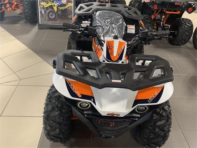 2021 Kayo BULL 125 at Star City Motor Sports