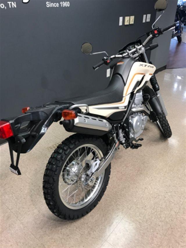 2019 Yamaha XT 250 at Sloan's Motorcycle, Murfreesboro, TN, 37129