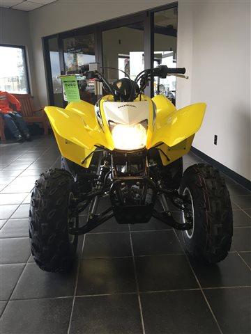 2018 Honda TRX 250X at Champion Motorsports, Roswell, NM 88201