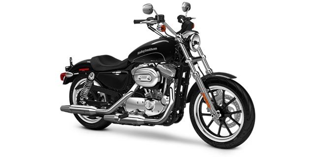 2016 Harley-Davidson Sportster SuperLow at Stu's Motorcycles, Fort Myers, FL 33912