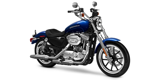 2016 Harley-Davidson Sportster SuperLow at Fort Myers