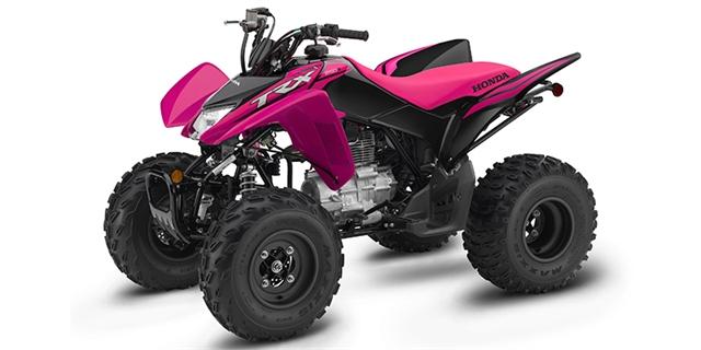2021 Honda TRX 250X at Extreme Powersports Inc