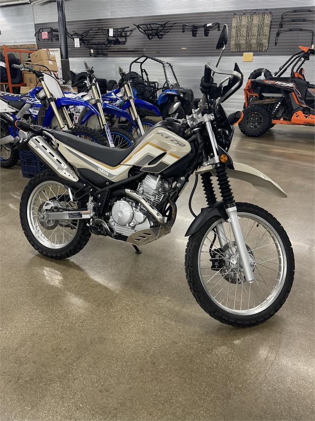 2019 Yamaha XT 250 at ATVs and More
