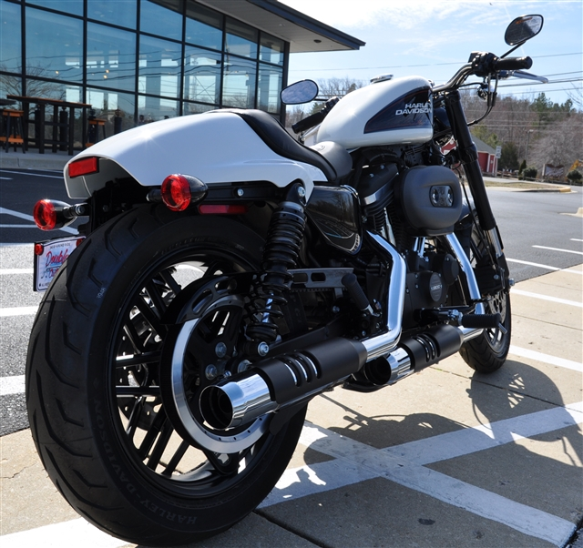 2019 Harley-Davidson Sportster Roadster at All American Harley-Davidson, Hughesville, MD 20637
