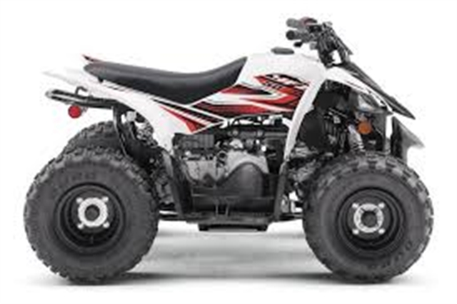 2020 Yamaha YFZ 50 at Youngblood RV & Powersports Springfield Missouri - Ozark MO