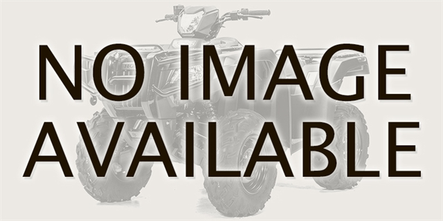 2020 Honda FourTrax Rancher 4X4 Automatic DCT EPS at Thornton's Motorcycle - Versailles, IN